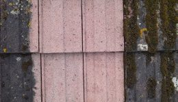 roof-tiles-cleaned-using-stonehealth-doff